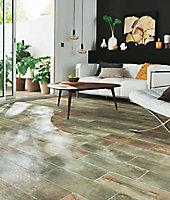 Carrelage sol et mur bois 17,5 x 50 cm Julyo