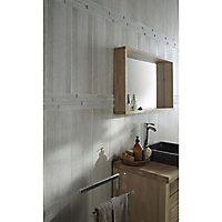 Carrelage sol et mur gris 20 x 60 cm Joppolo