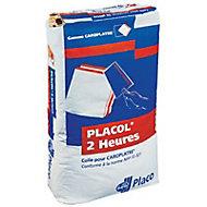 Colle carreaux de plâtre Placol 10 kg
