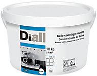 Colle carrelage murale cuisine et salle de bain Diall 10 kg