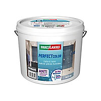 Colle joint anthracite Parexlanko 2,5 kg Perfect