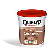 Colle Murale Quelyd pour Liège Pâte 1 kg