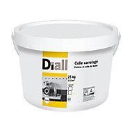 Colle pâte mur intérieur blanc 25 kg