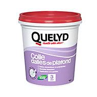 Colle Quelyd pour Dalles de plafond Pâte 1 kg