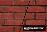Colorant Bostik Pigment Coloré pour Ciment, Mortier, Enduit et Chape Noir 1,25kg