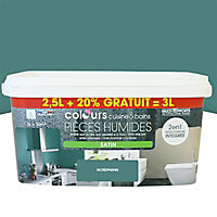 COLOURS CSDB NORDMANN 2L5 +20%