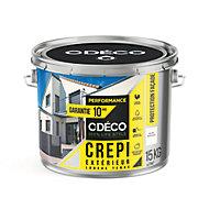 Crépi extérieur CDECO Blanc Rustique Performance 15kg