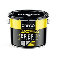 Crépi extérieur CDECO Gris Clair Pro 15kg