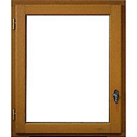 Fenêtre bois 1 vantail - l.50 x h.60 cm, tirant droit