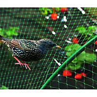 Filet de protection oiseau Nortene 2 x 5 m