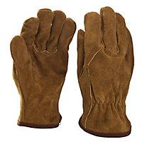 Gants de conducteur en cuir Verve - Taille 8 (M)