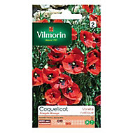 Graines de Coquelicot Simple Rouge Vilmorin