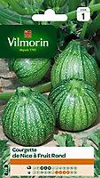 Graines de Courgette de Nice à Fruit Rond Vilmorin