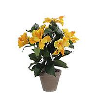 Hibiscus jaune artificiel ø30 x h.40 cm en pot Stan gris ø11,5 cm
