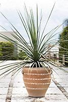 Jarre terre cuite Deroma Antalya 36 x h.43 cm