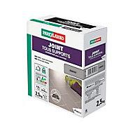Joint tous support ciment Parexlanko 2,5 kg
