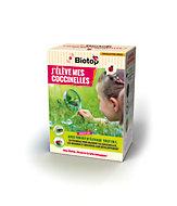 Kit pédagogique d'élevage de coccinelles Biotop