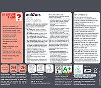 Lasure Bois gris 8 ans Colours - 2.5 L