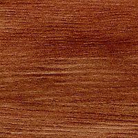 Lasure Ton chêne moyen 8 ans Colours - 1 L