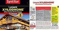 Lasure Xylodhone Syntilor Oregon 5L - 8 ans