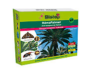 Néma-Palmier contre charançon rouge du palmier Biotop (25 millions)