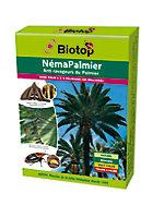 Néma-Palmier contre charançon rouge du palmier Biotop (50 millions)