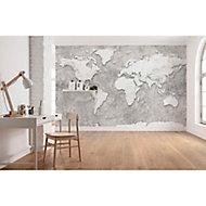 Papier peint panoramique World Relief 350 x 250 cm