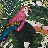 Papier peint papier duplex Cleome multicolore 53cm