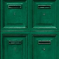 Papier peint vinyle sur intissé GoodHome vert Barlia 53cm