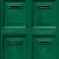 Papier peint vinyle sur intissé GoodHome vert Barlia