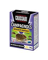 Pat'appat campagnol Caussade