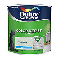 Peinture cuisine Dulux Valentine vert saule mat 2,5L