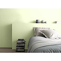 Peinture dépolluante bambou satin 0,75L