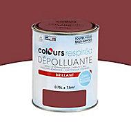 Peinture dépolluante bigarreau brillant 0,75L