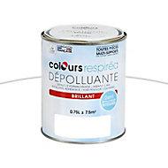 Peinture dépolluante blanc brillant 0,75L