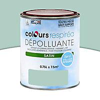 Peinture dépolluante topaze satin 0,75L