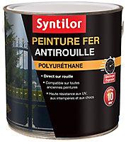 Peinture extérieure fer antirouille noir mat Syntilor 1,5L
