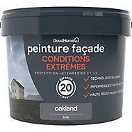 Peinture façade autonettoyante Premium GoodHome gris Oakland 10L