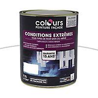 Peinture façade Colours Conditions extrêmes blanc 0,75L