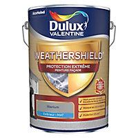 Peinture façade protection extrême Dulux Valentine gris titanium 5L