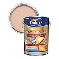 Peinture façade protection extrême Dulux Valentine Ultimate ocre rose 5L