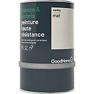Peinture haute résistance carrelage mural et lambris GoodHome blanc Canby mat 0,75L
