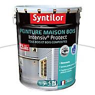 Peinture maison bois Intensiv Protect Blanc 8L