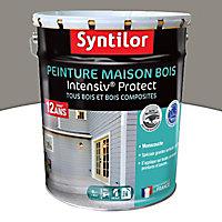 Peinture maison bois Intensiv Protect Gris cendré 8L