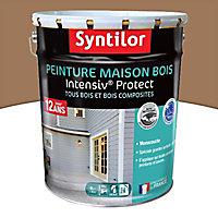 Peinture maison bois Intensiv Protect Marron 8L
