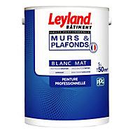 Peinture monocouche murs et plafonds Leyland haute performance blanc mat 5L