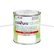 Peinture multi-supports blanc brillant 0,5L