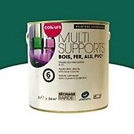 Peinture multi-supports extérieur Colours vert basque satin 2L