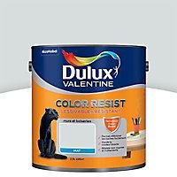 Peinture murs et boiseries Dulux Valentine Color resist blanc argent mat 2,5L