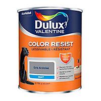 Peinture murs et boiseries Dulux Valentine Color Resist gris ardoise mat 0,75L
